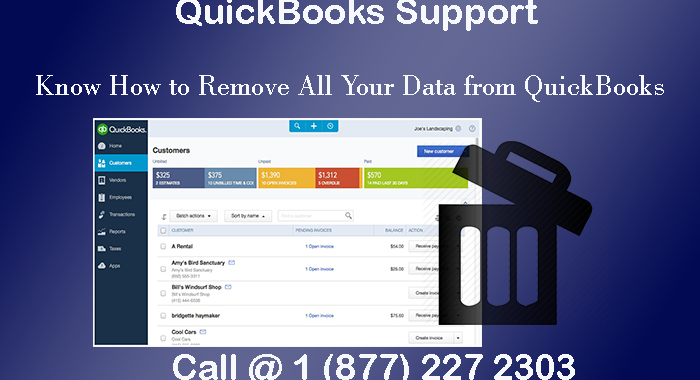 Call QuickBooks Support and Know How to Remove All Your Data from QuickBooks