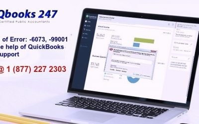 Get rid of Error: -6073, -99001 with the help of QuickBooks Error Support